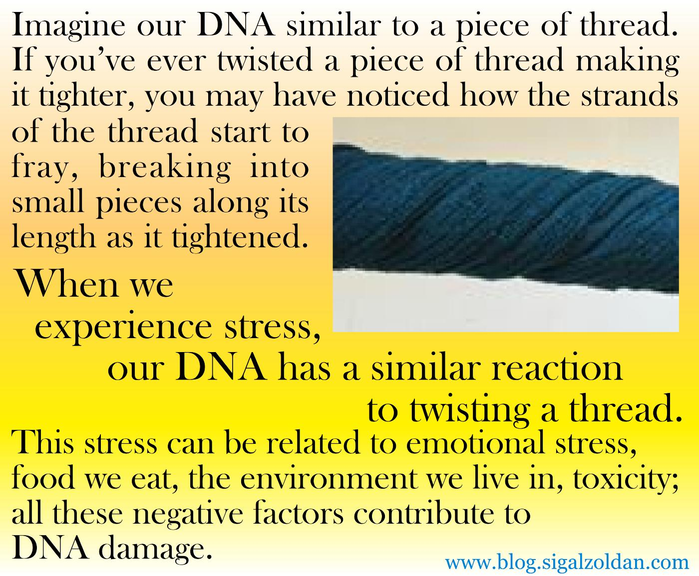 DNA-twisting a thread